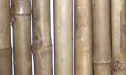 Rolled Tam Vong Bamboo Fence