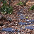Recycled Rubber Walk and Stepping Stones